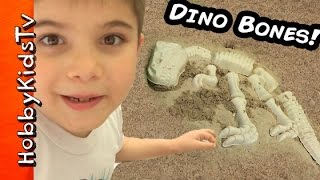 Digging Up Surprise DINOSAUR BONES and Toys in a Jurassic Sandbox with HobbyKidsTV